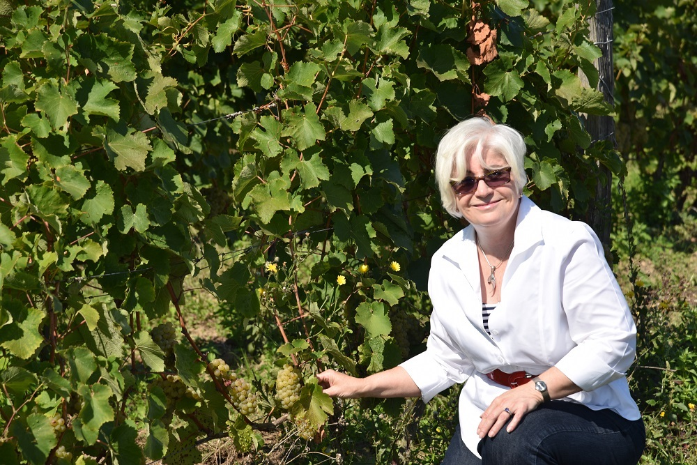 Kathleen_with_Chenin_vines_in_France_web_size.jpg